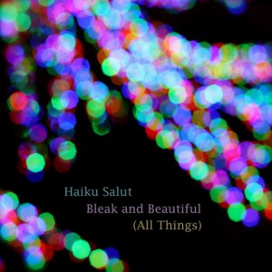 Haiku Salut -  Bleak And Beautiful (All Things)