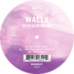 Walls - Into Our Midst