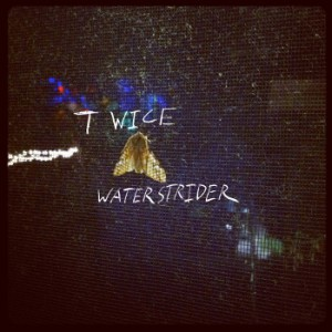 Waterstrider - Twice