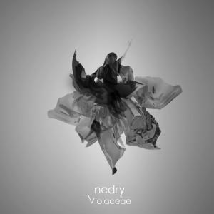 Nedry - Violaceae single artwork